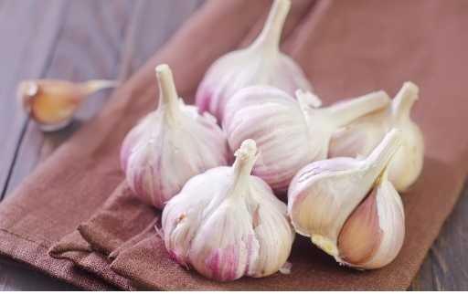 garlic on damp towl